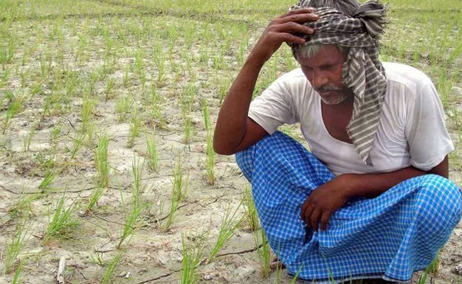 Farmers-Farmers Fourth in Modi's Raj
