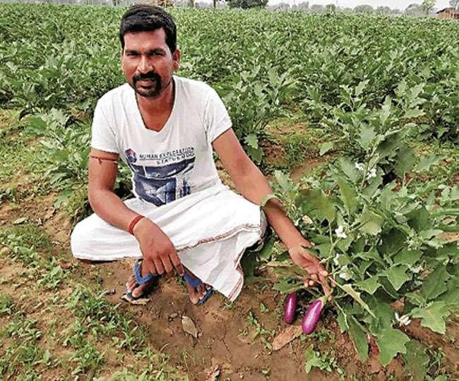 सब्जी की खेती कर किसानों के लिए नजीर बने सुरेश मेहता