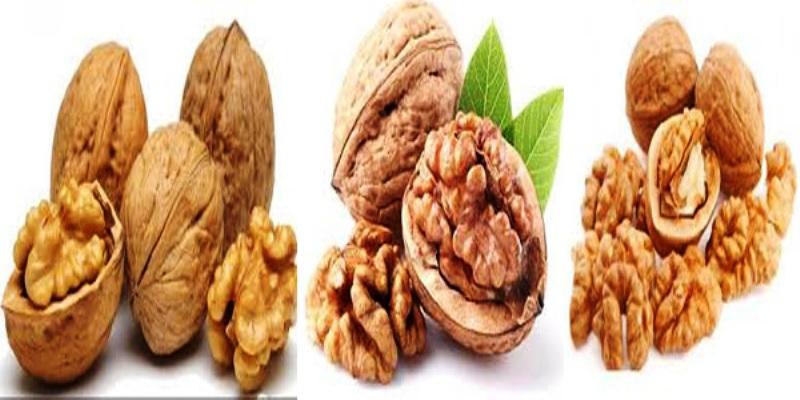 जानिए अखरोट तथा अखरोट के छिलके से होने वाले फायदे